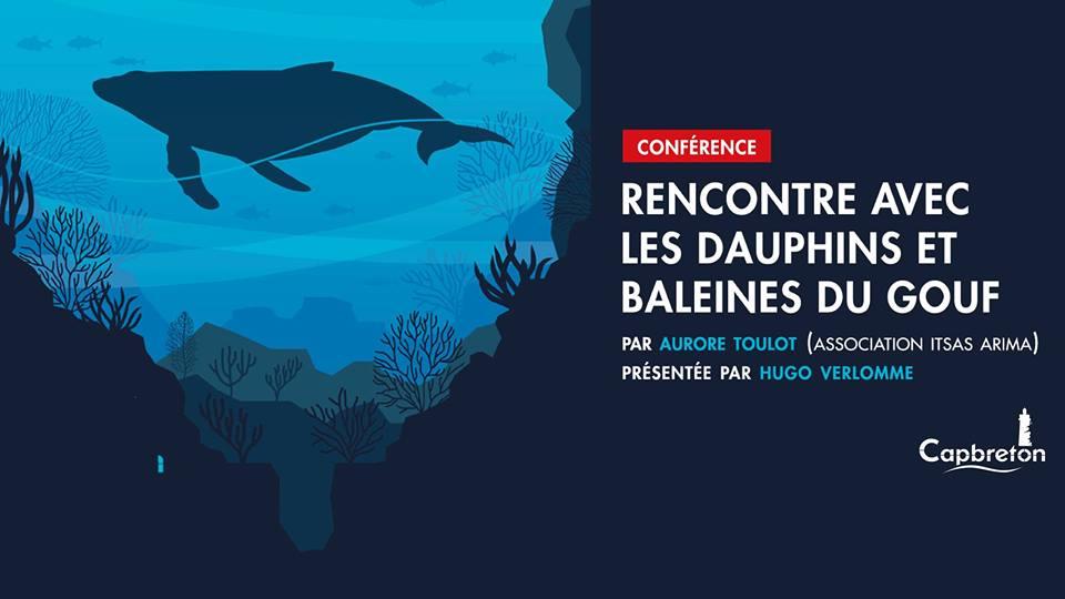 conférence rencontre avec les baleines et dauphins du gouf de capbreton